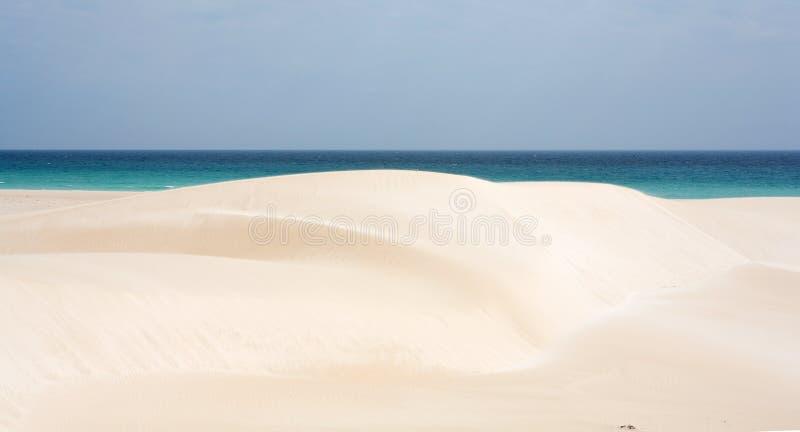 海滩海岛索科特拉岛 库存照片