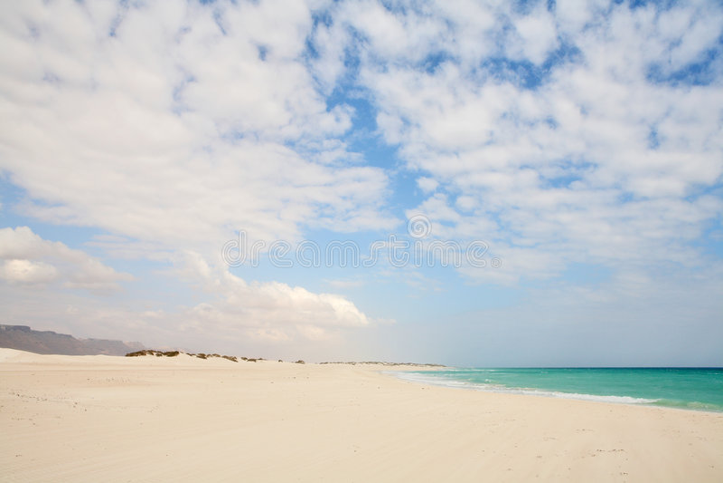 海滩海岛索科特拉岛 免版税图库摄影