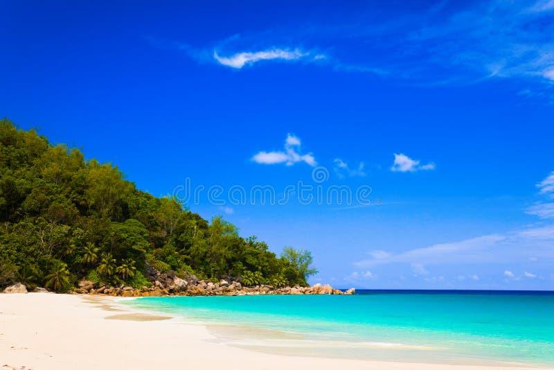 海滩海岛praslin热带的塞舌尔群岛 库存图片