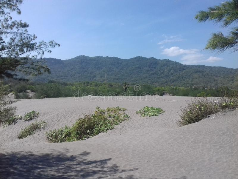 海滩海滨沙子 库存图片