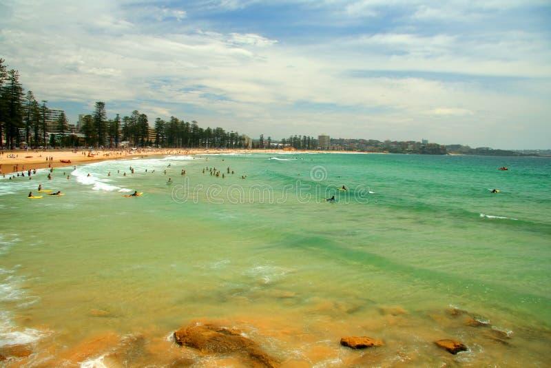 海滩男子气概的悉尼 库存图片