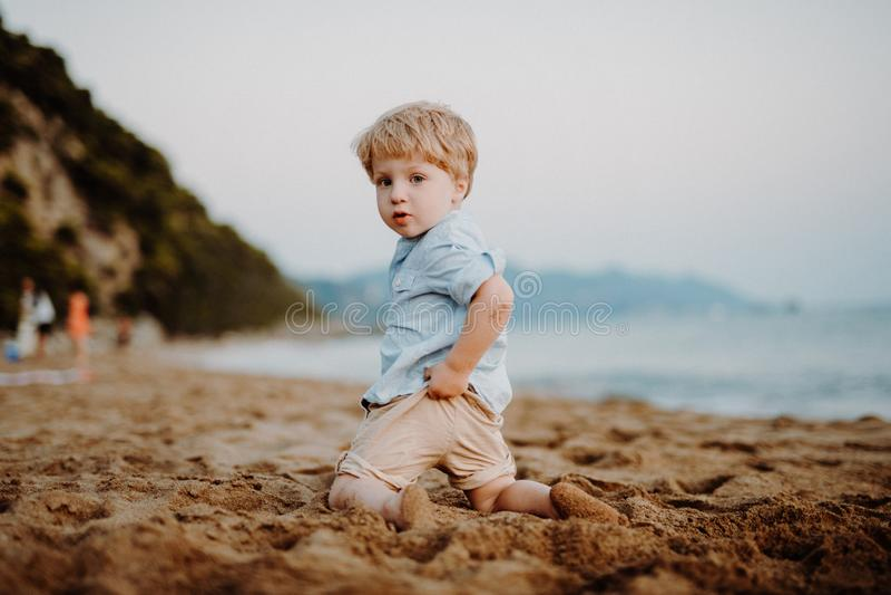海滩的一个小小孩男孩在度假夏天休假,使用 免版税库存图片