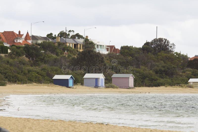 海滩的布赖顿五颜六色的房子使墨尔本维多利亚好的澳大利亚靠岸 免版税库存图片