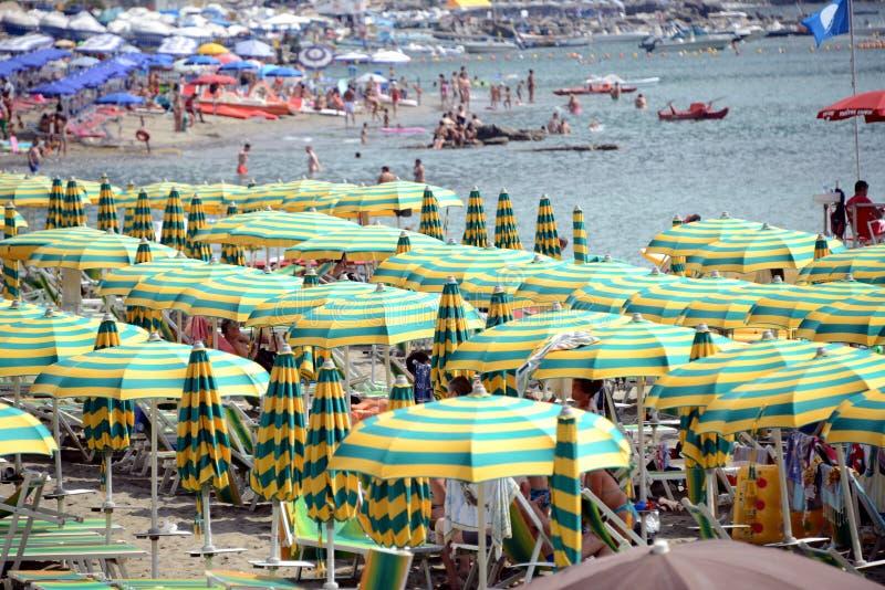 海滩的游人 库存照片