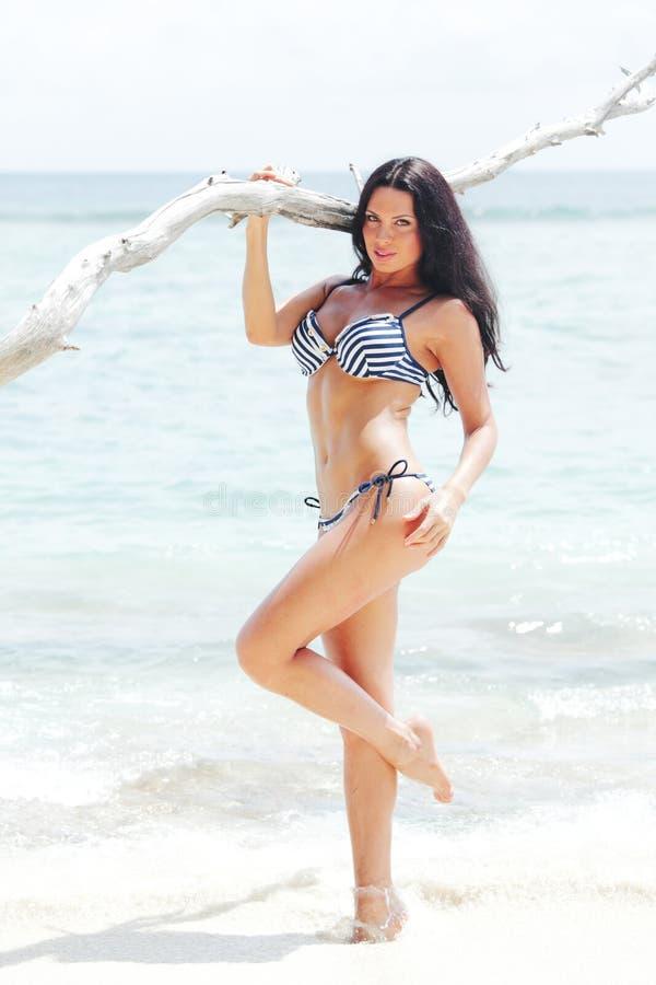 海滩的美丽的妇女 库存图片