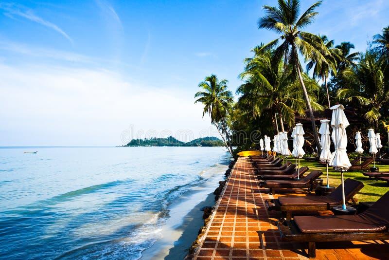 海滩睡椅沙子回归线伞 免版税库存图片