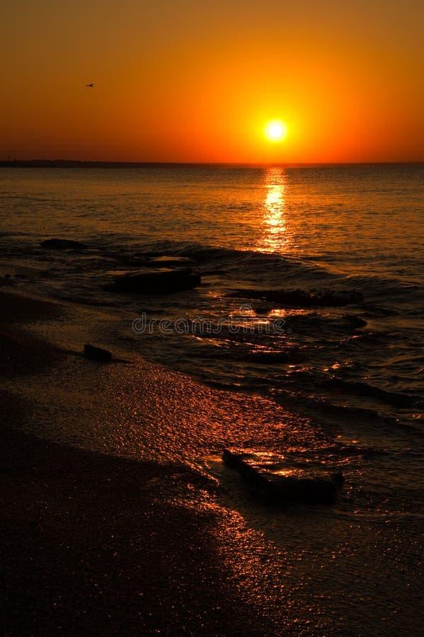 海滩离开了日落 免版税图库摄影
