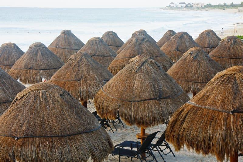 海滩秸杆盖了热带伞 库存图片