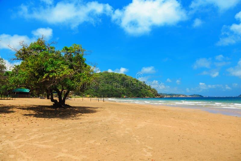 海滩空热带 大理石海湾,斯里兰卡 免版税图库摄影