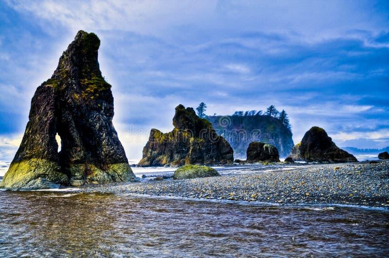海滩红宝石 免版税图库摄影