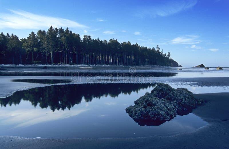 海滩红宝石 免版税库存图片