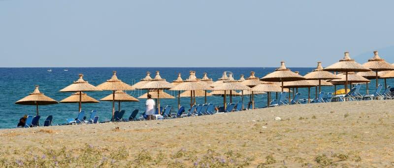海滩组织的全景 免版税库存照片