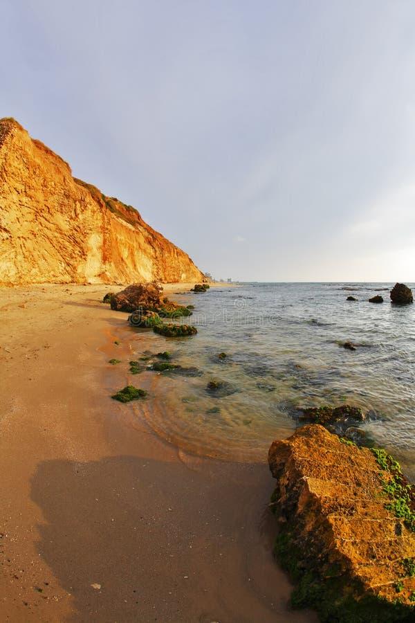 海滩绿色巨大的青苔海运石头 图库摄影