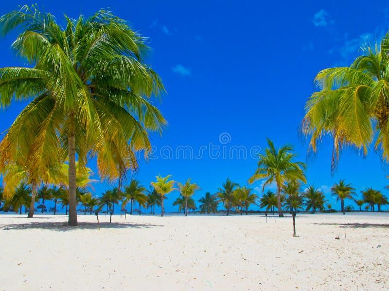 海滩缓慢地cayo古巴playa sirena 免版税库存图片