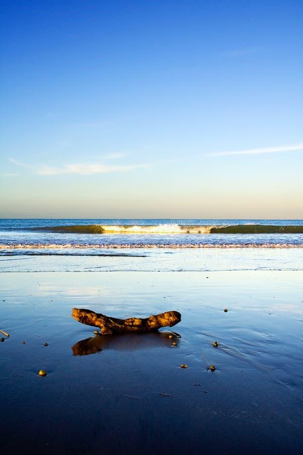 海滩美丽的新的场面taipa西兰 图库摄影