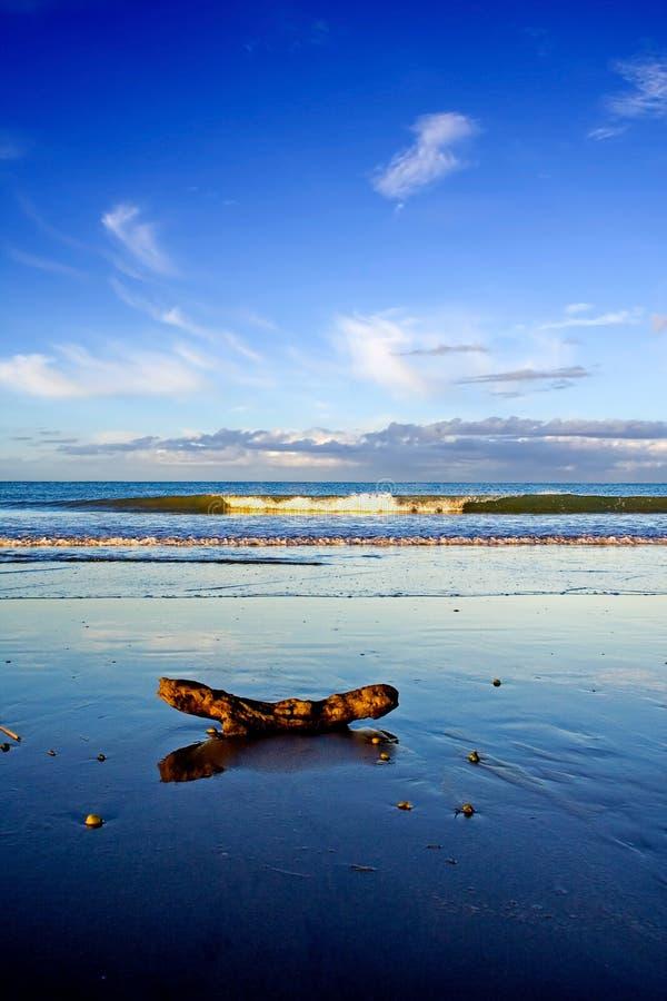 海滩美丽的新的场面taipa西兰 免费库存照片