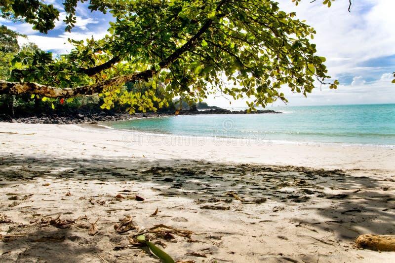 海滩肋前缘前面rica 库存照片
