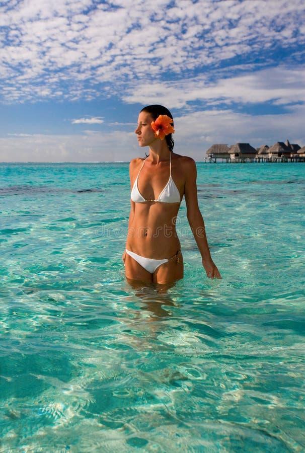 海滩胜地热带妇女 免版税库存照片