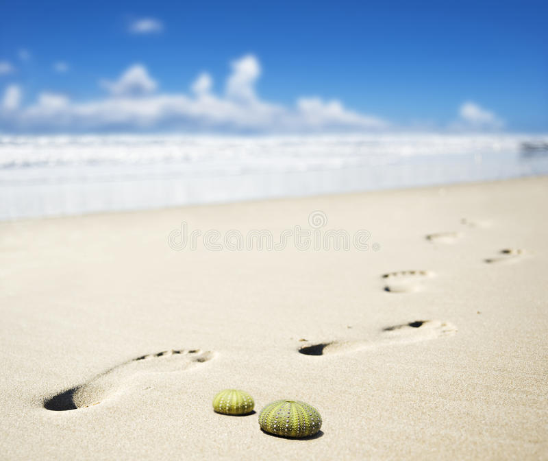 海滩英尺打印含沙 图库摄影