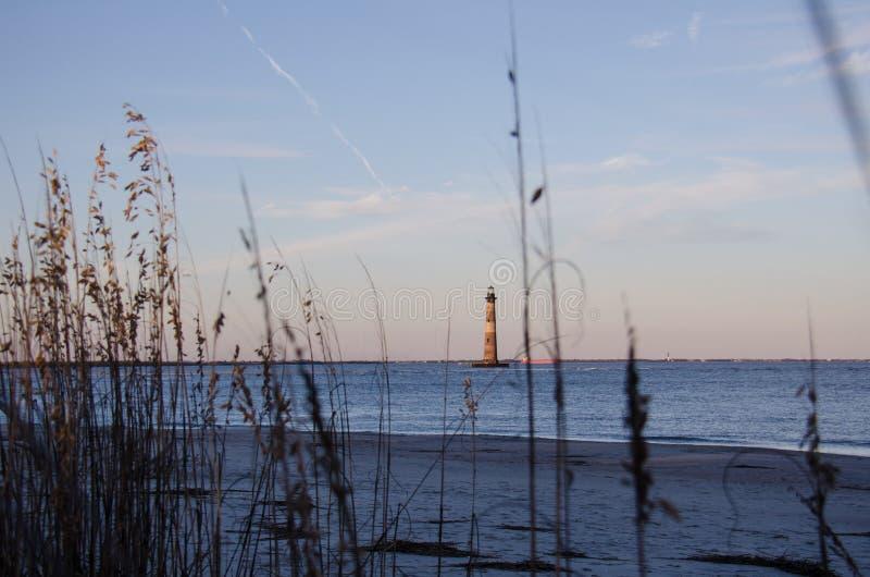 海滩草和芦苇形成与莫里斯海岛灯塔的一个自然框架在SC 免版税库存图片