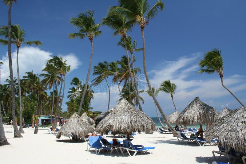海滩草手段热带伞 免版税库存图片