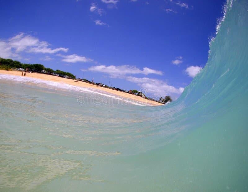 海滩蓝色移动朝水波 免版税库存照片