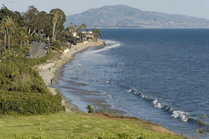 海滩蝴蝶加州 免版税库存图片
