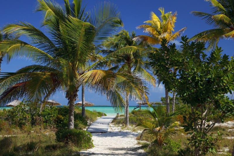海滩路含沙海运 免版税图库摄影