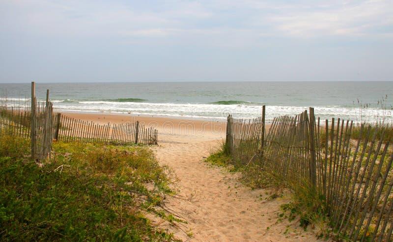 海滩路径含沙 库存图片