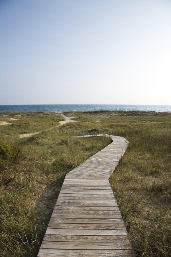 海滩路径 图库摄影