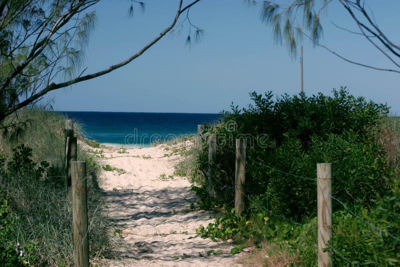 海滩路径 免版税图库摄影