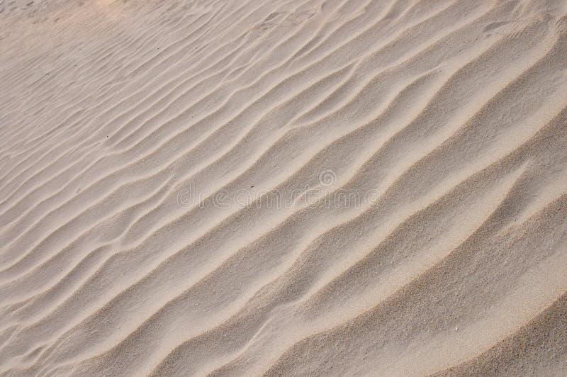 海滩转移了风 免版税库存照片