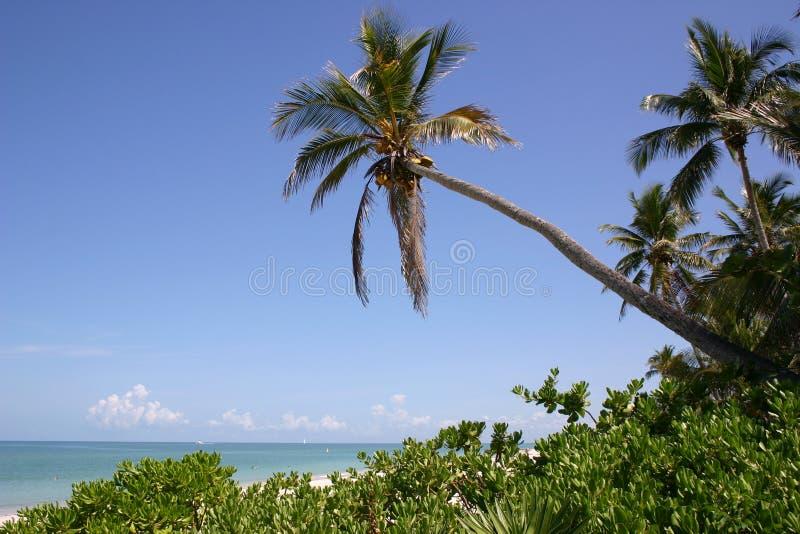 海滩那不勒斯 图库摄影