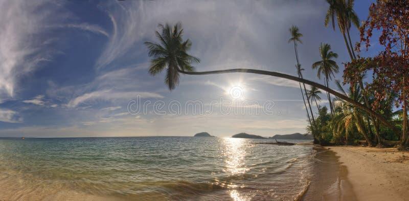 海滩酸值mak全景 库存图片