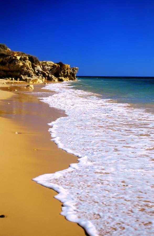 海滩金黄热带 免版税库存图片