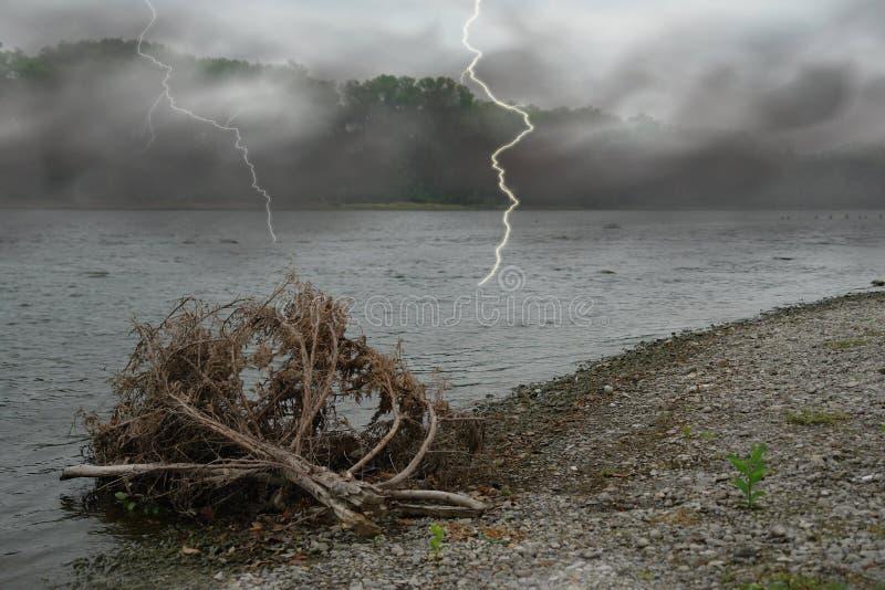 海滩闪电 库存照片