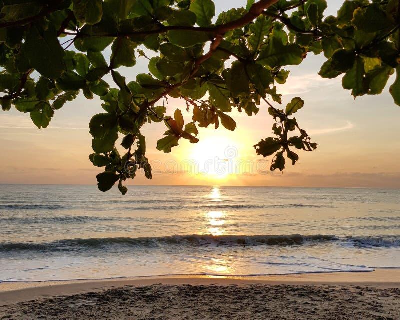 海滩风景看法反对日出天空的 免版税库存图片