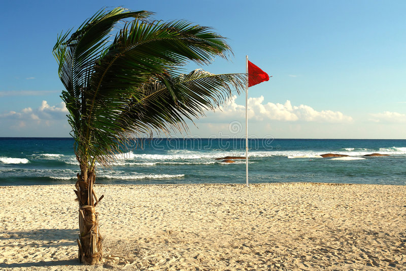 海滩风 免版税库存照片