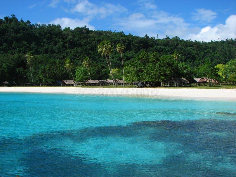 海滩香槟瓦努阿图 免版税库存照片