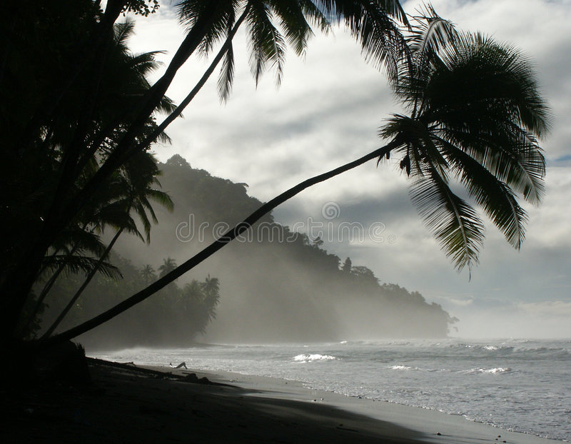 海滩黎明 免版税库存照片