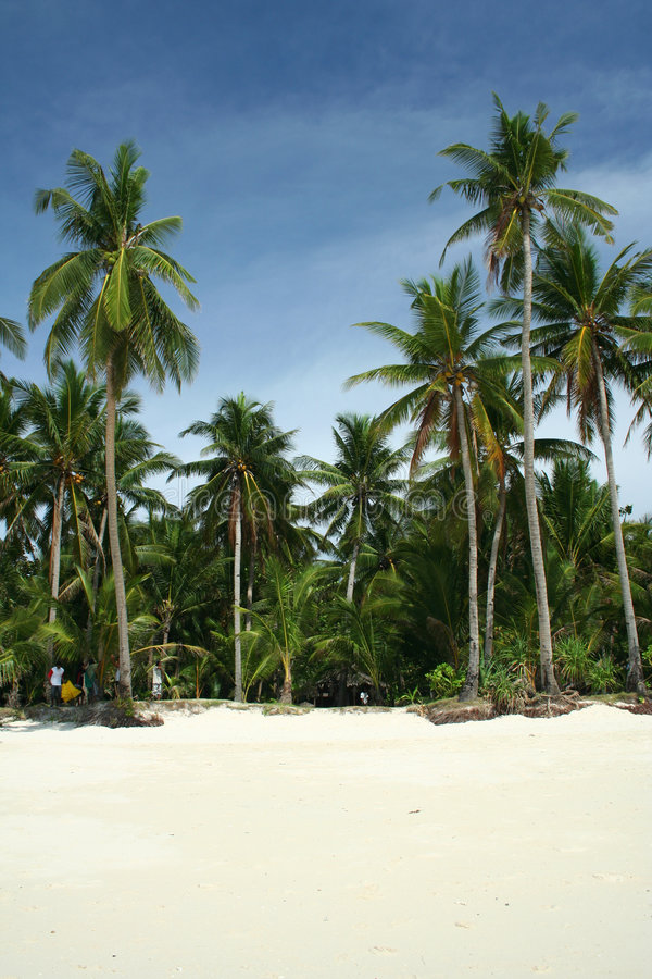 海滩boracay掌上型计算机热带菲律宾的结 免版税库存照片