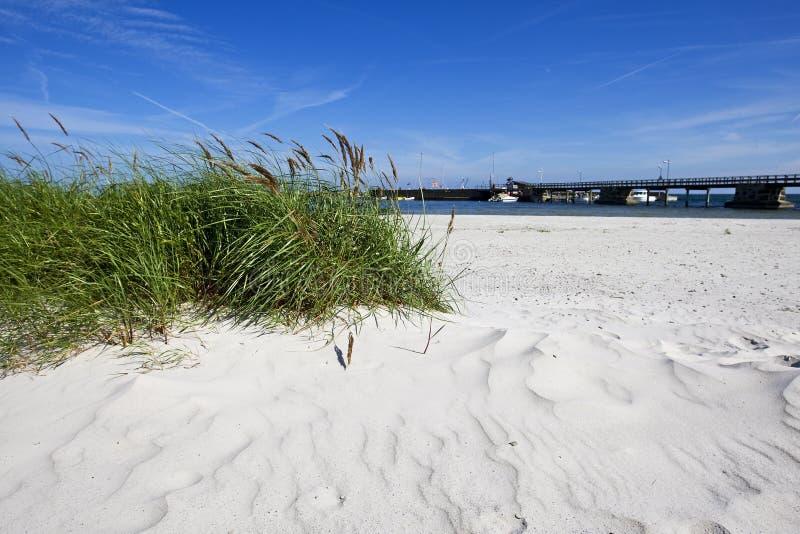 海滩bornholm丹麦snogebaek 库存照片