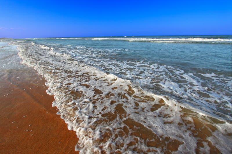 海滩daytona佛罗里达 库存照片