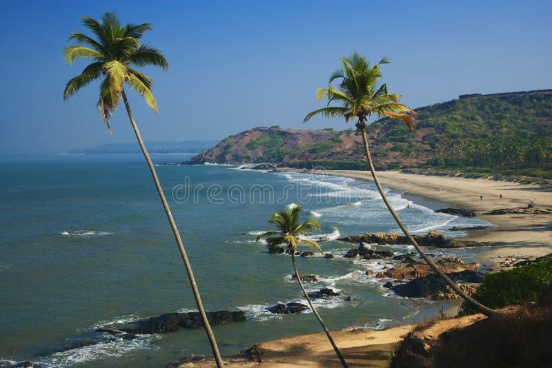 海滩goa印度vagator 免版税库存图片