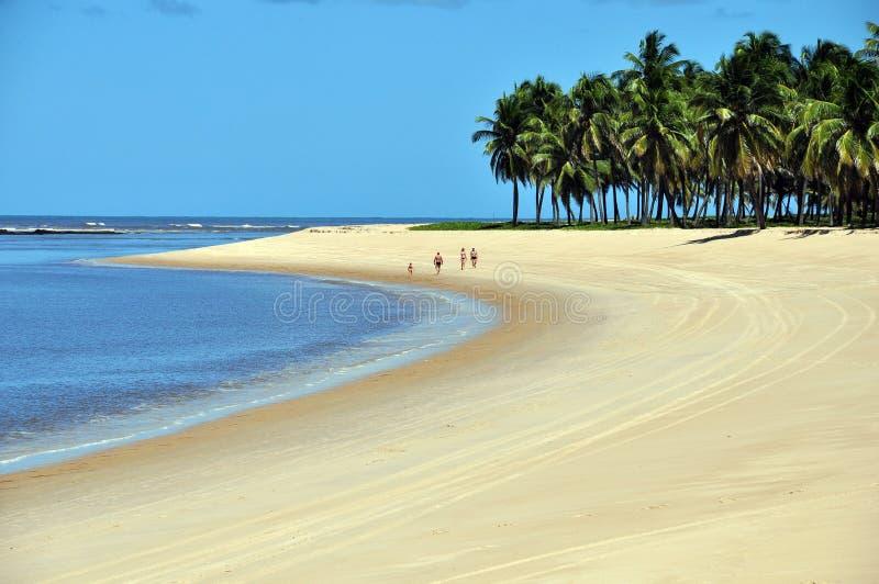 海滩gunga 免版税库存照片