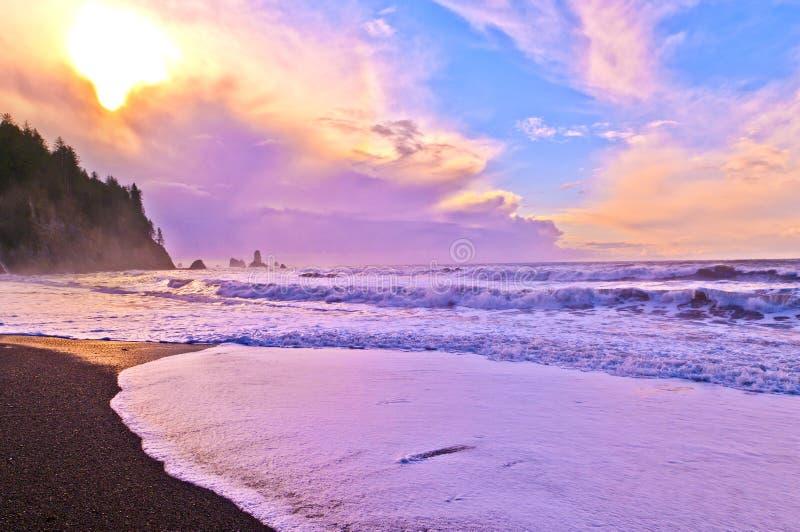 海滩la推进 库存图片