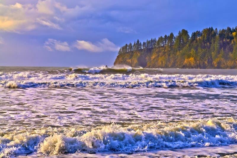 海滩la推进 免版税库存图片