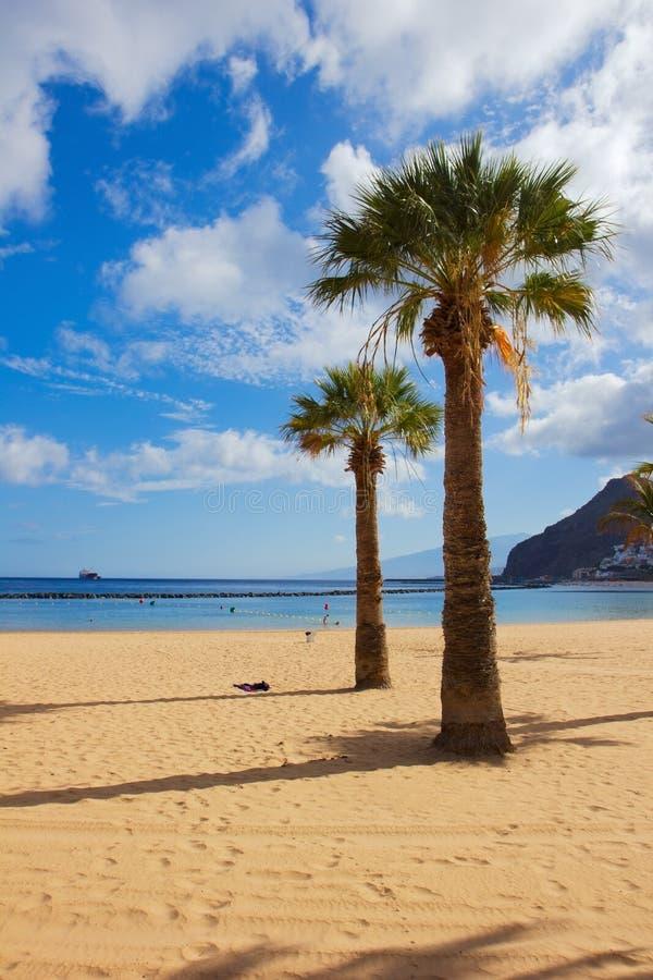 海滩las西班牙tenerife teresitas 库存照片