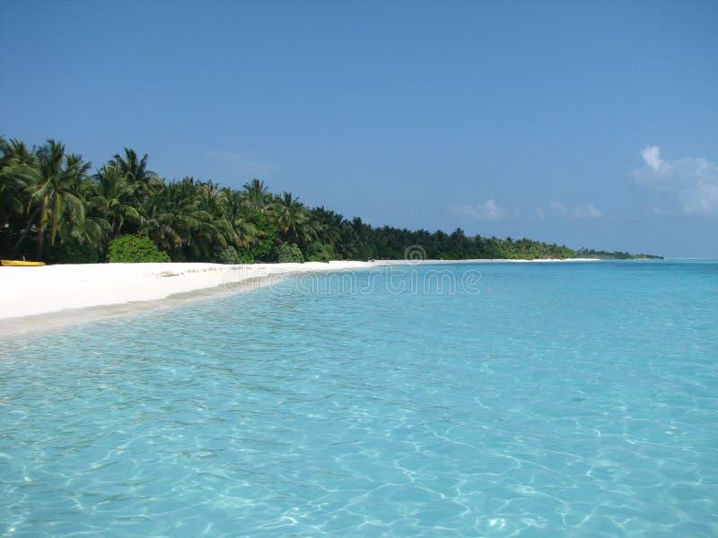 海滩maldivian 库存照片