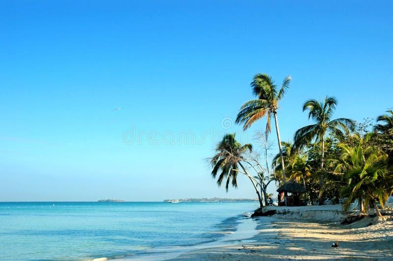 海滩negrils 免版税库存照片